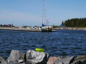 In einer Windböe fliegt Queeny´s Wasserschüssel vom Steg ins Wasser und treibt ans andere Ufer.